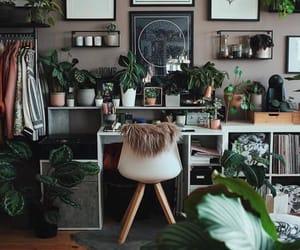 aesthetic, boho, and cactus image