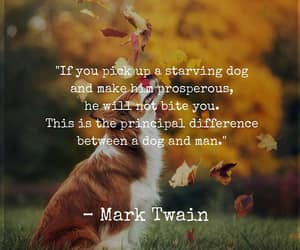 mark twain, be their voice, and dogs are love image