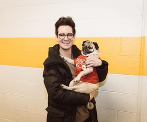 brendon urie, cuties, and dog image
