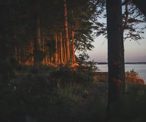 Baltic Sea, explore, and golden light image