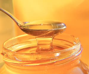 honey, theme, and yellow image