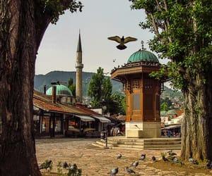 travel, visit, and sarajevo image