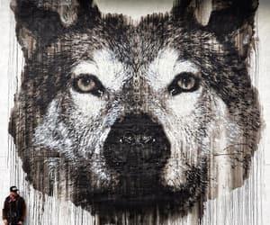 arte, graffiti, and lobo image