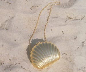 beach, shell, and gold image