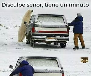 frase, frases, and humor image