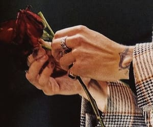 flowers, hands, and rings image