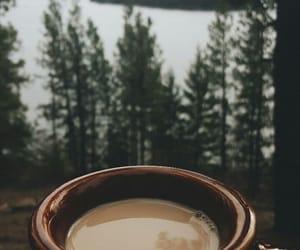 coffee, forest, and nature image