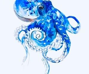 art, octopus, and maritim image