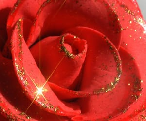 rose, flowers, and glitter image