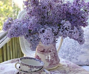 flowers, purple, and lilac bush image