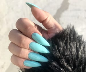 claws, mint, and nails image