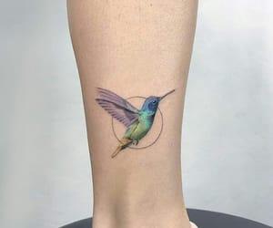 hummingbird, ink, and tattoo image
