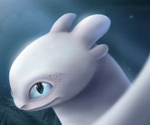 animation, beautiful, and dragon image