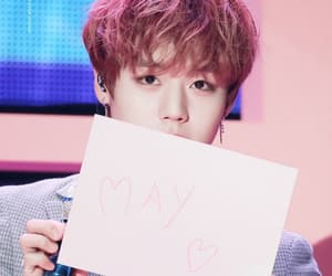 may, wanna one, and jihoon image