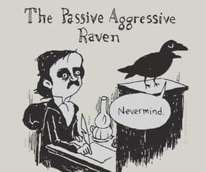 funny, edgar allan poe, and raven image