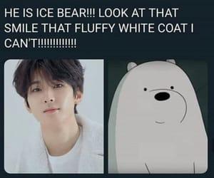 funny, ice bear, and korean image