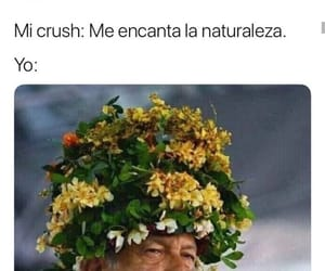 funny, meme, and crush image