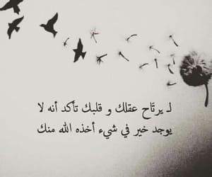 حكمة image