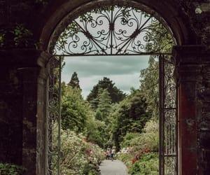 cork, garden, and gate image