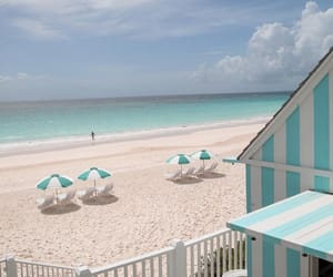 beach, hammock, and boardwalk image
