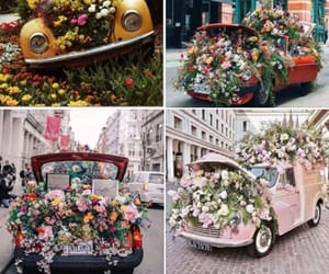 aesthetic, floral, and spring image