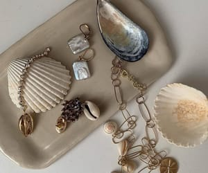 article, fashion, and seashell image