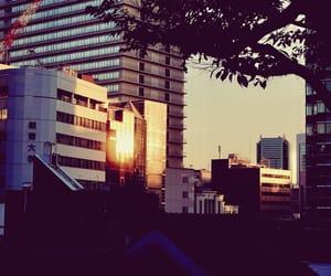 travel, 東京都, and かめらいふ image