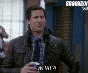 gif, brooklyn nine nine, and jake peralta image