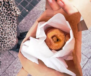blogger, cozy, and donuts image