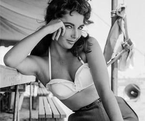 beauty, fashion, and Elizabeth Taylor image
