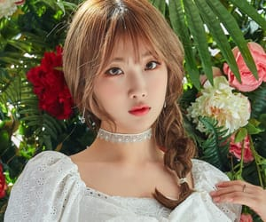 asian, gwsn, and flowers image
