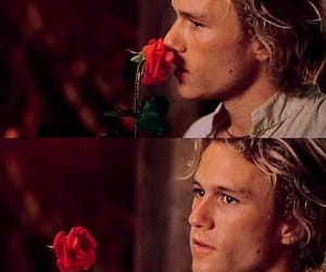 heath ledger and rose image