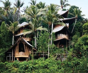 architecture, bali, and cities image