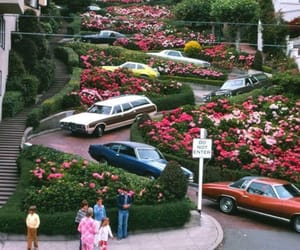 70s, car, and flowers image