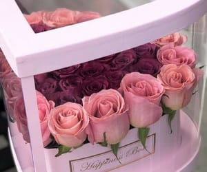gift, roses, and love image