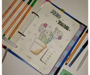 book, pastel, and cactus image