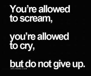 quotes, cry, and scream image