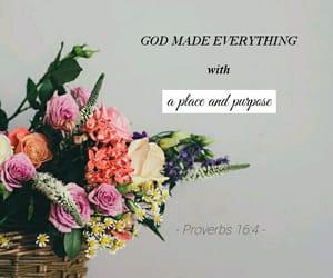 encouragement, flowers, and god image