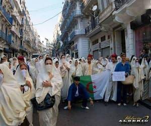 Algeria, dz, and manifestation image