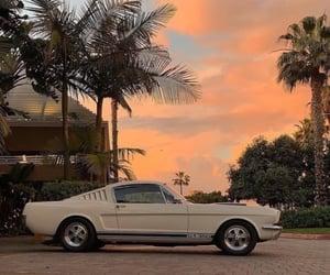 california, car, and grunge image