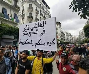dz and algerian image