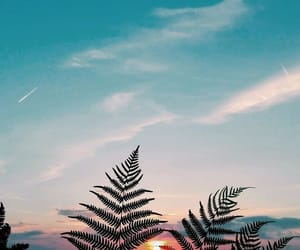 wallpaper and sky image