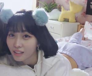 twice, kpop, and momo image