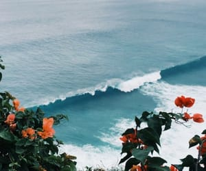 flowers, beach, and blue image