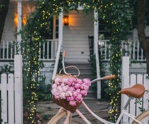 flowers, house, and bike image