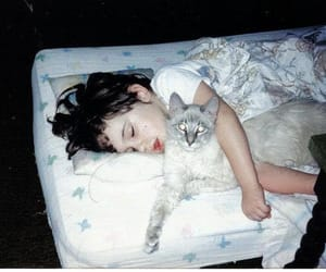 cat, night, and girl image