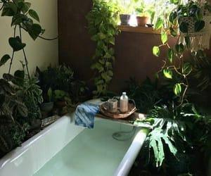 plants, bathroom, and aesthetic image