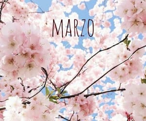 aesthetic, background, and march image