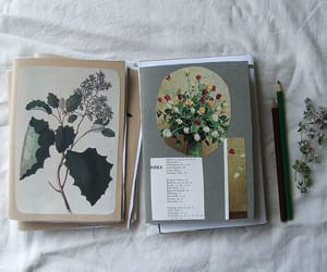 flowers, book, and art image