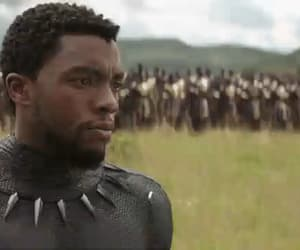black panther, mcu, and gif image